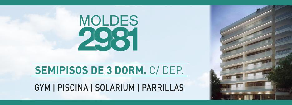 MOLDES 2981
